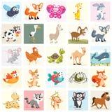 Grupo da ilustração do vetor dos animais Foto de Stock