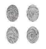 Grupo da impressão digital Linha abstrata elementos do lswirl da decoração com dedo ilustração do vetor