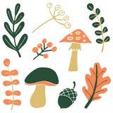 Grupo da natureza do outono Foto de Stock