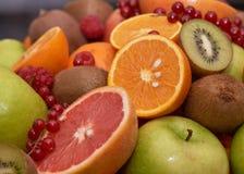 Grupo da opini?o do close-up de frutos no restaurante fotos de stock