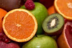 Grupo da opini?o do close-up de frutos no restaurante foto de stock royalty free