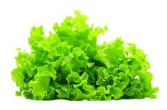 Grupo da salada verde isolado sobre o branco fotografia de stock