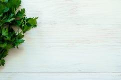 Grupo da salsa fresca nas placas brancas Imagem de Stock Royalty Free