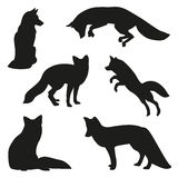 Grupo da silhueta do Fox Imagem de Stock