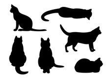 Grupo da silhueta do gato Fotografia de Stock
