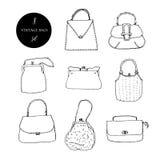 Grupo da tinta dos sacos, das embreagens e das bolsas do vintage Ilustração desenhada mão do vetor Elegante e na moda ilustração do vetor