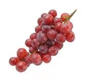Grupo da uva no fundo branco Imagens de Stock