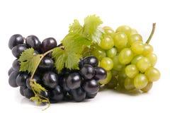 Grupo da uva verde e azul com as folhas isoladas no fundo branco fotos de stock royalty free