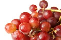 Grupo da uva vermelha Fotografia de Stock
