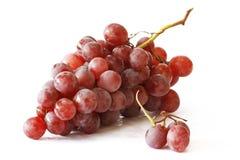 Grupo da uva vermelha Fotografia de Stock Royalty Free