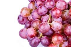 Grupo da uva vermelha no fundo branco Fotografia de Stock