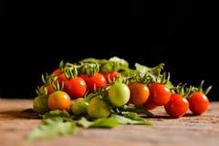 Grupo da vida de Stil de tomate na madeira velha Imagens de Stock