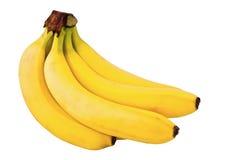 Grupo das bananas Imagem de Stock