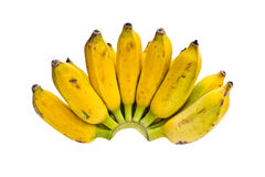 Grupo das bananas   Fotos de Stock