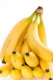 Grupo das bananas Imagens de Stock
