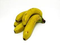 Grupo das bananas Fotografia de Stock Royalty Free