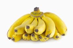 Grupo das bananas isoladas com fundo branco Foto de Stock
