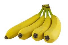 Grupo das bananas isoladas na foto branca do fundo P bonito Fotografia de Stock