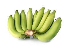 Grupo das bananas isoladas no fundo branco Imagem de Stock Royalty Free