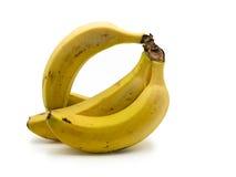 Grupo das bananas isoladas no fundo branco Fotografia de Stock