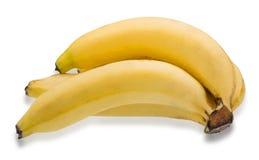 Grupo das bananas isoladas no fundo branco Fotos de Stock Royalty Free