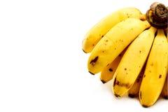 Grupo das bananas isoladas no fundo branco com espaço da cópia fotos de stock royalty free