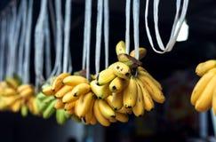 Grupo das bananas no mercado tailand fotografia de stock