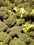Grupo das cabeças dos brócolis fotos de stock
