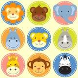 Grupo das caras animais Imagens de Stock