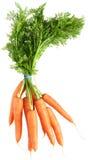 Grupo das cenouras com caudas Imagem de Stock Royalty Free