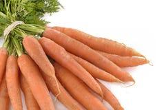 Grupo das cenouras frescas isoladas Imagem de Stock Royalty Free