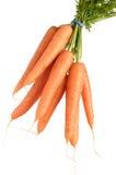 Grupo das cenouras isoladas Imagens de Stock