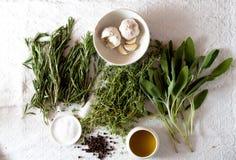 Grupo das ervas para cozinhar Imagens de Stock