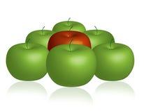 Grupo das maçãs Fotografia de Stock