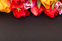 Grupo das tulipas com quadro-negro imagem de stock