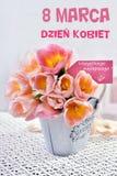 Grupo das tulipas para o dia das mulheres no Polônia Imagem de Stock Royalty Free