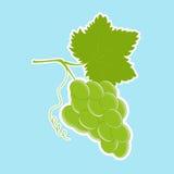 Grupo das uvas brancas com uma folha Ilustração Stock