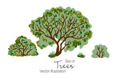 Grupo de árvore, de grama e de arbustos ilustração royalty free
