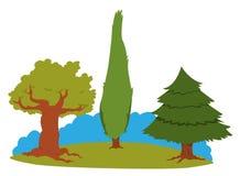 Grupo de árvores ilustração stock
