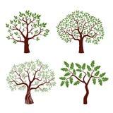 Grupo de árvores da cor ilustração royalty free