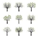Grupo de árvores do vetor com folhas verdes Ilustração do vetor Imagens de Stock Royalty Free
