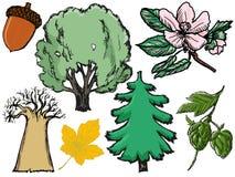 Grupo de árvores e de plantas ilustração do vetor
