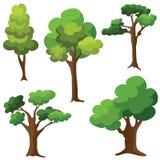 Grupo de árvores isoladas no fundo branco Fotografia de Stock