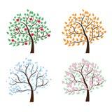 Grupo de árvores quatro estações ilustração do vetor