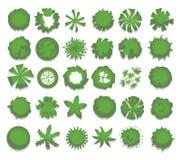 Grupo de árvores verdes diferentes, arbustos, conversão Vista superior para projetos de design da paisagem Ilustração do vetor, i Fotografia de Stock Royalty Free