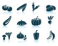 Grupo de ícone dos vegetais Foto de Stock Royalty Free