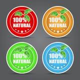 Grupo de ícone natural de 100 por cento. Fotografia de Stock