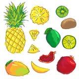 Grupo de ícones coloridos do fruto dos desenhos animados: abacaxi, quivi, limão, manga, grandada, cal Foto de Stock