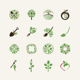 Grupo de ícones do alimento biológico ilustração royalty free