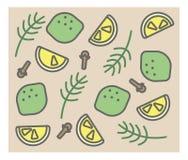 Grupo de ícones do vetor: alecrins, cravo-da-índia, cal, limão Foto de Stock